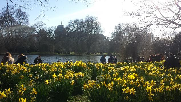 St James Park photo